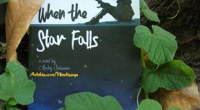 When the Star Falls - Yang Terjadi Ketika Bintang Terjatuh