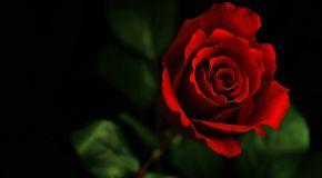Merah Balada