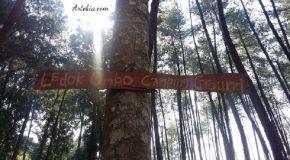Ledok Ombo Campground - Poncokusumo Malang