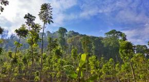 Penelusuran dan Napak Tilas Reruntuhan Situs Candi Pendharmaan Ken Angrok di Kabupaten Malang (Bagian 2)